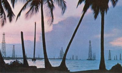 Imagen exposicion Mal de mar hacia un triste trópico - CAAM San Antonio Abad